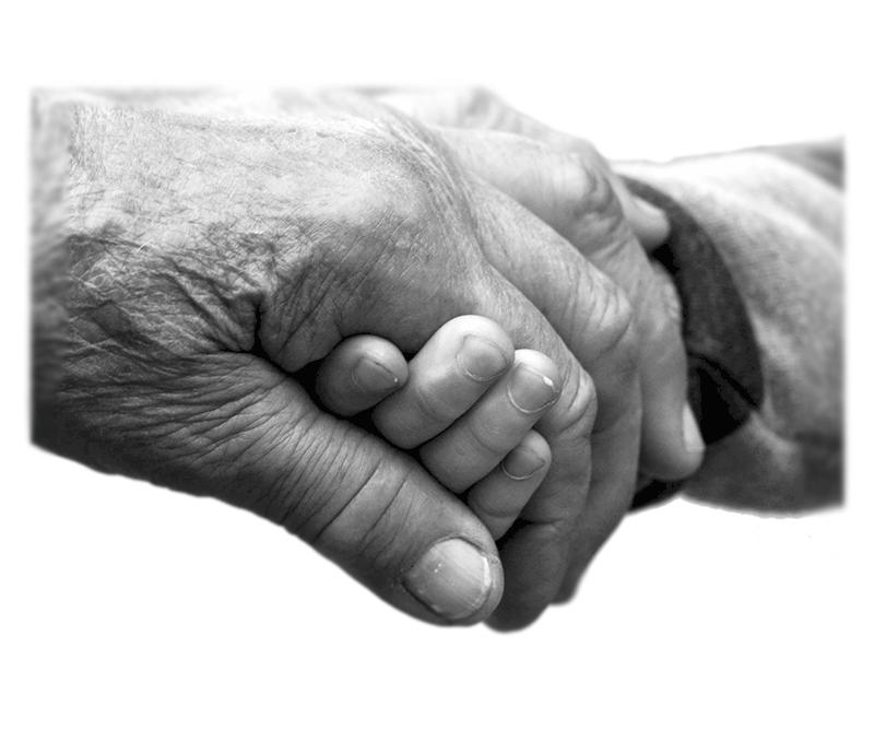La calidad en los servicios gerontológicos