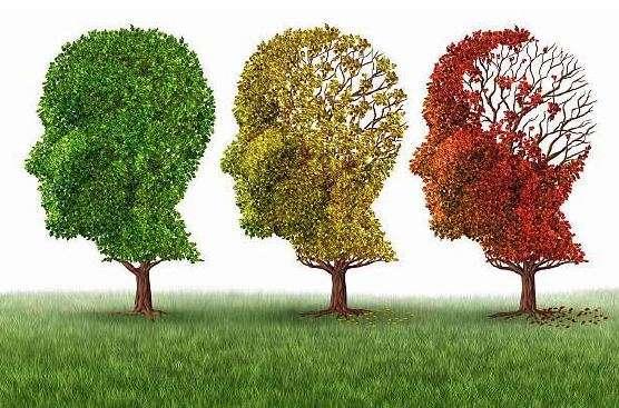 La construcción del vínculo con la persona mayor con demencia